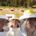 Bee Yours - Honey Farm